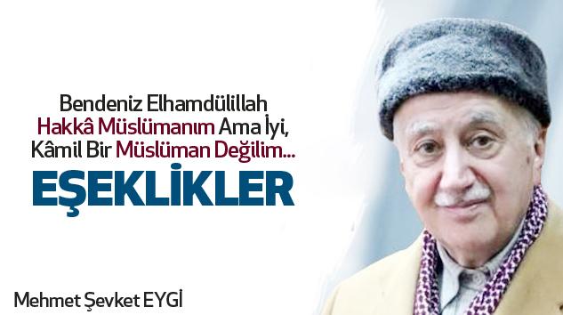 Mehmet Şevket Eygi:Eşeklikler...