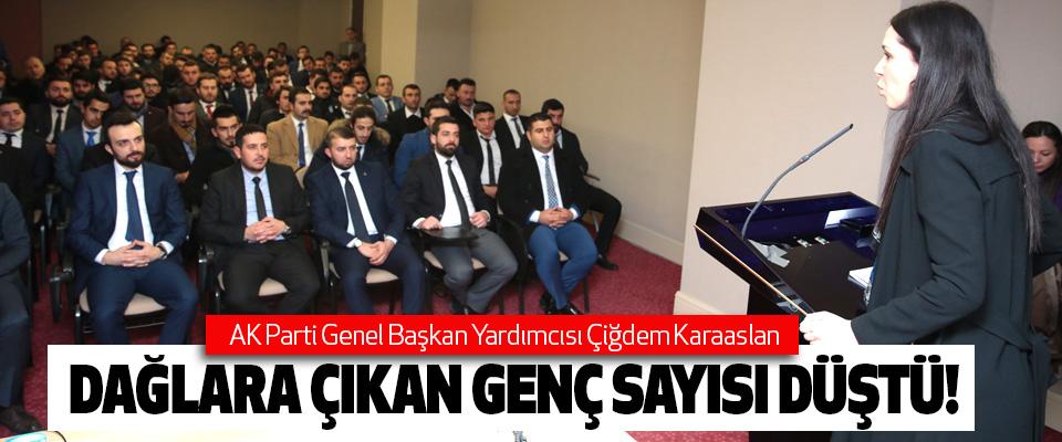 AK Parti Genel Başkan Yardımcısı Çiğdem Karaaslan,Dağlara çıkan genç sayısı düştü!