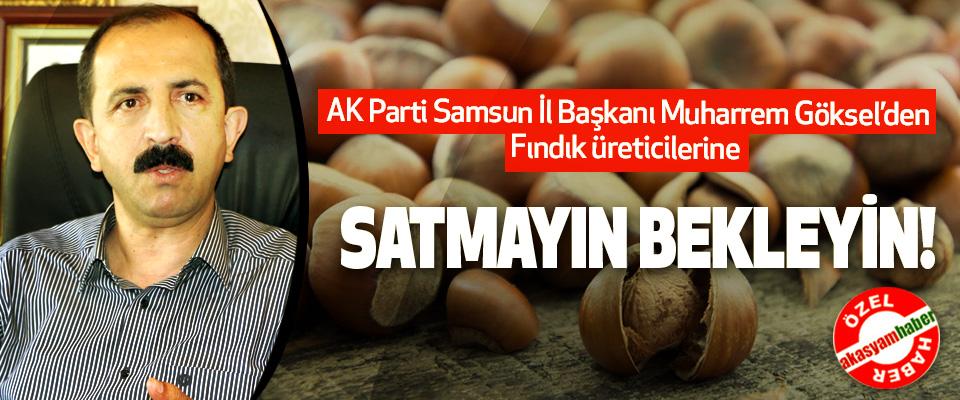 AK Parti Samsun İl Başkanı Muharrem Göksel'den Fındık üreticilerine; Satmayın bekleyin!