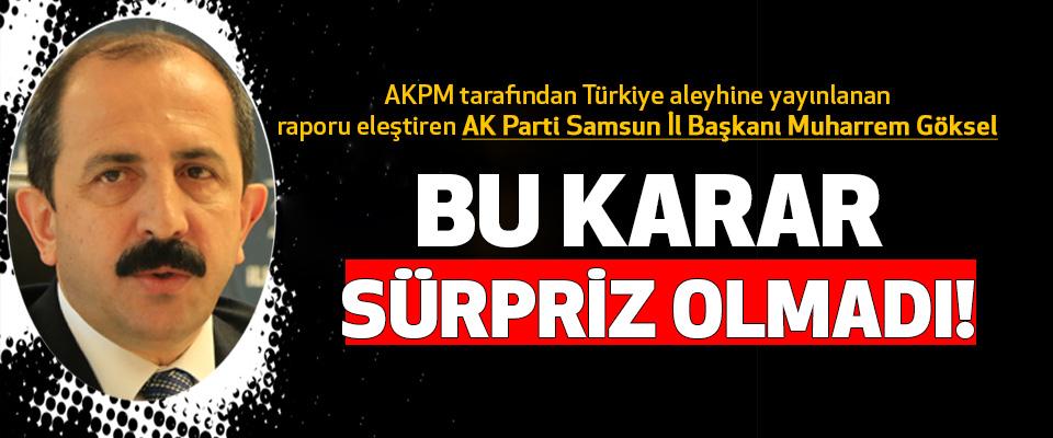 AK Parti Samsun İl Başkanı Muharrem Göksel AKPM tarafından Türkiye aleyhine yayınlanan raporu eleştirdi