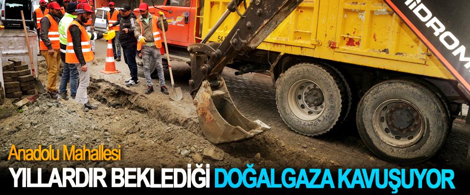 Anadolu Mahallesi, Yıllardır Beklediği Doğalgaza Kavuşuyor