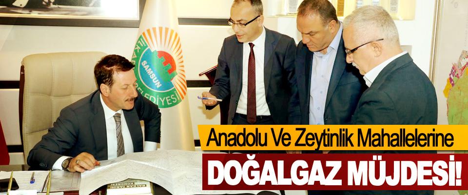 Anadolu Ve Zeytinlik Mahallelerine Doğalgaz Müjdesi!