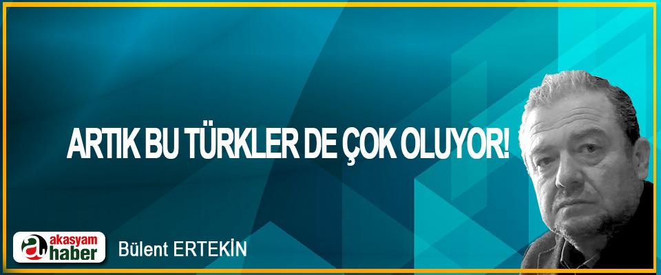 Artık bu Türkler de çok oluyor!