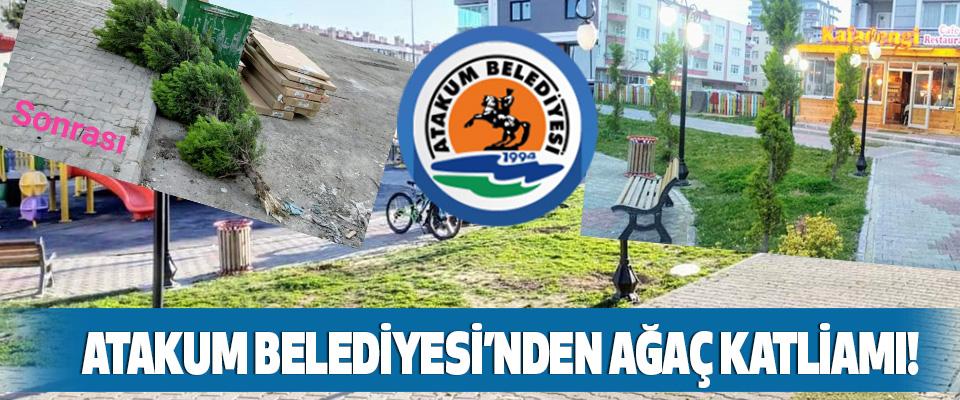 Atakum Belediyesi'nden Ağaç Katliamı!