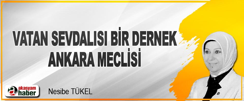 Vatan Sevdalısı Bir Dernek Ankara Meclisi