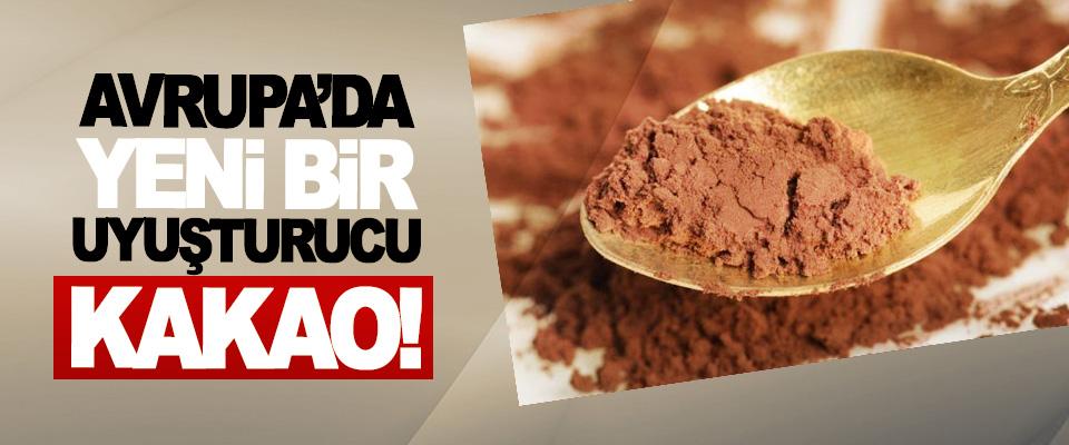 Avrupa'da yeni bir uyuşturucu kakao!