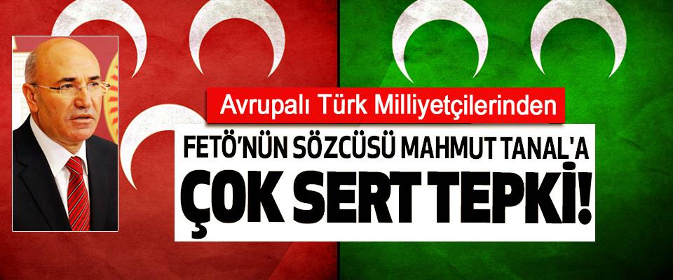 Avrupalı Türk Milliyetçilerinden FETÖ'nün Sözcüsü Mahmut Tanal'a Çok Sert Tepki!