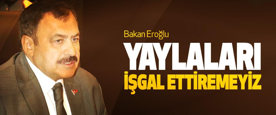 Bakan Eroğlu: Yaylaları İşgal Ettiremeyiz