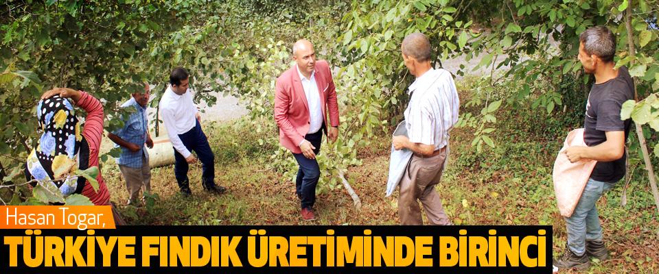 Başkan Togar, Türkiye Fındık Üretiminde Birinci