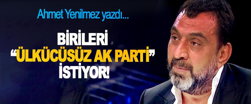 """Birileri """"ülkücüsüz AK Parti"""" istiyor!"""