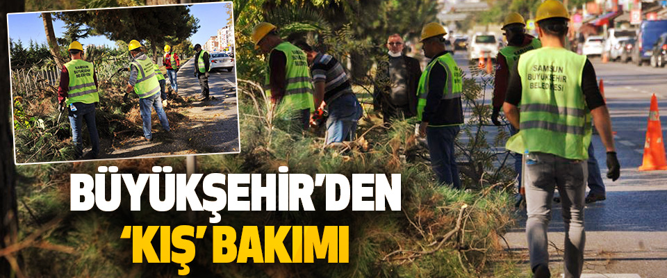 Büyükşehir'den 'Kış' Bakımı