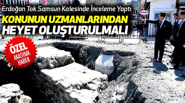 Erdoğan Tok Samsun Kalesinde İnceleme Yaptı