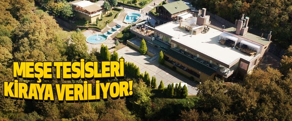 Canik Belediyesi Meşe Tesislerini kiraya veriyor!