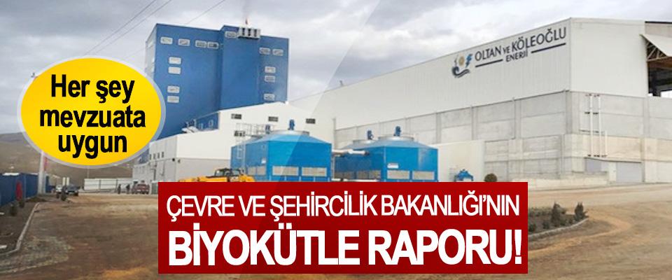 Çevre Ve Şehircilik Bakanlığı'nın biyokütle raporu!