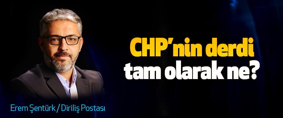 CHP'nin derdi tam olarak ne?