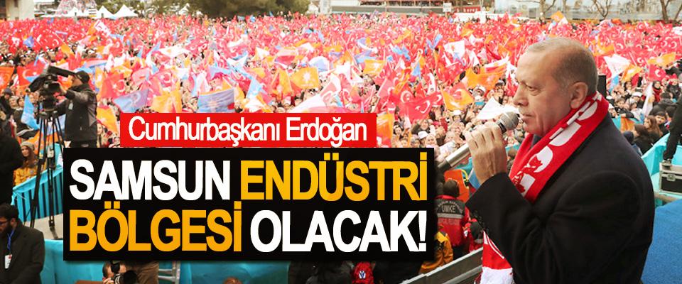 Cumhurbaşkanı Erdoğan; Samsun Endüstri Bölgesi Olacak!