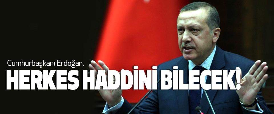 Cumhurbaşkanı Erdoğan,Herkes Haddini Bilecek!