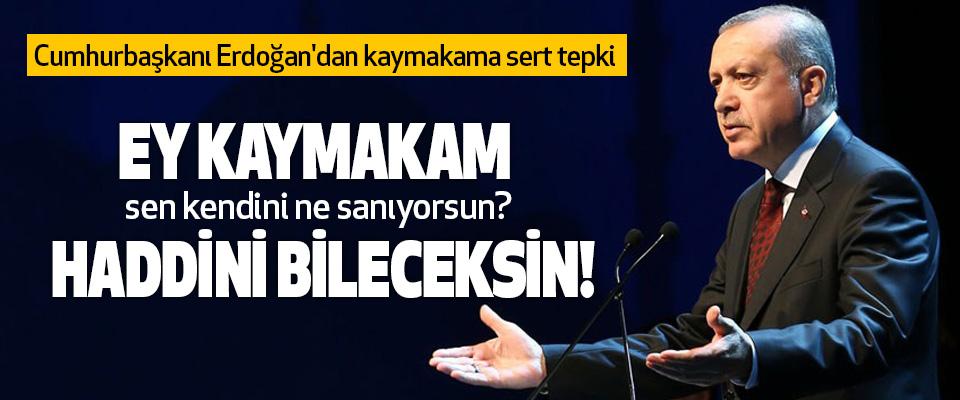 Cumhurbaşkanı Erdoğan'dan kaymakama sert tepki