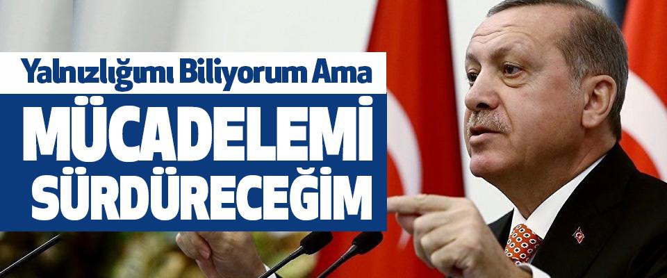 Cumhurbaşkanı Erdoğan, Yalnızlığımı Biliyorum Ama Mücadelemi Sürdüreceğim