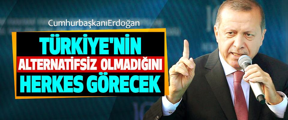 Cumhurbaşkanı Erdoğan: Türkiye'nin Alternatifsiz Olmadığını Herkes Görecek