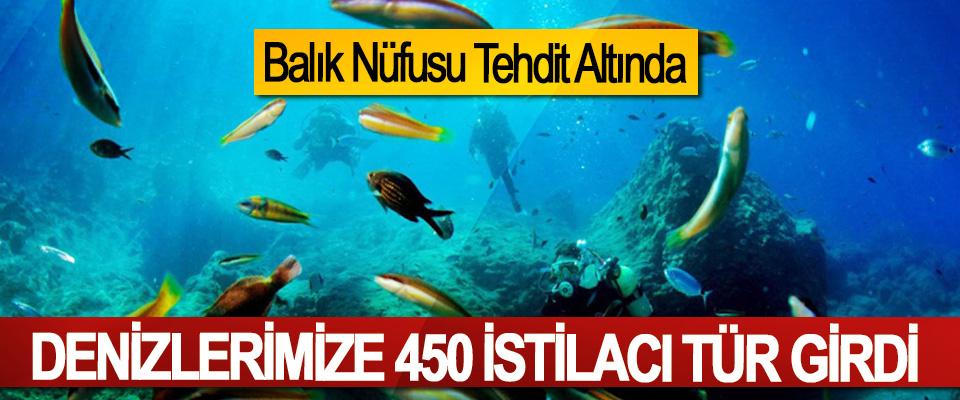 Denizlerimize 450 İstilacı Tür Girdi