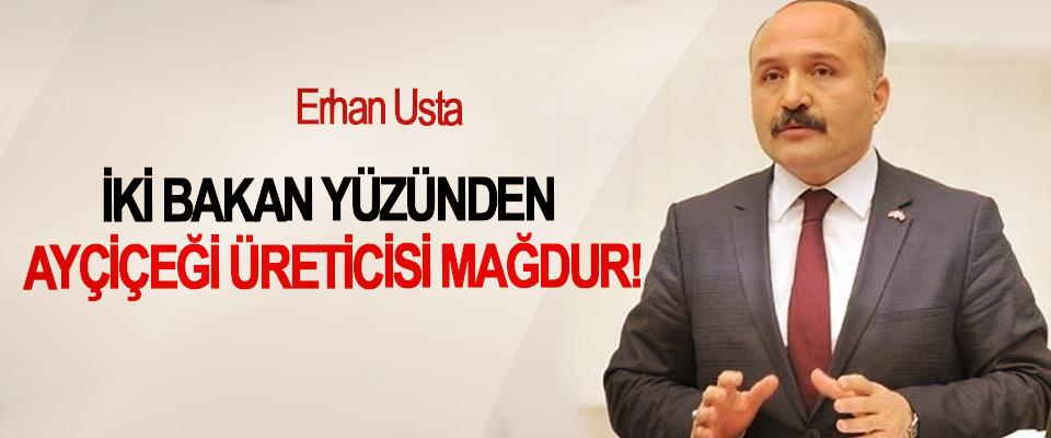 Erhan Usta:  İki bakan yüzünden ayçiçeği üreticisi mağdur!