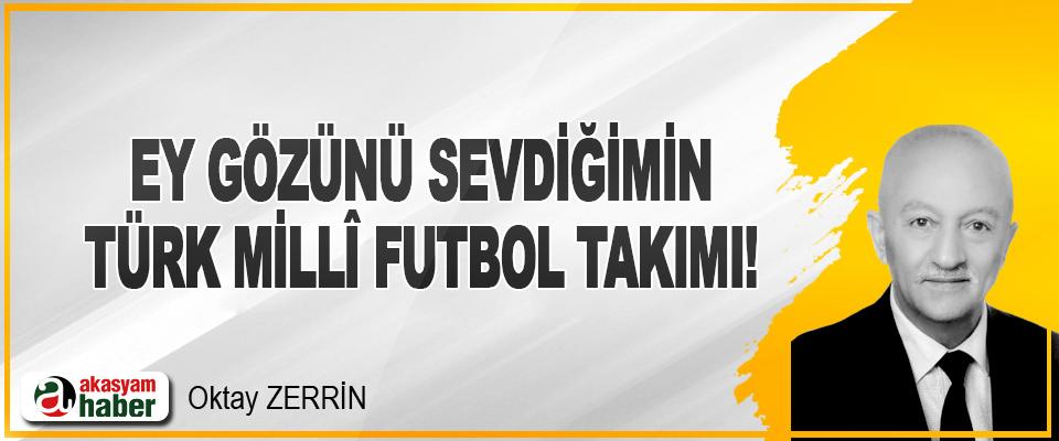 Ey Gözünü Sevdiğimin Türk Millî Futbol Takımı!
