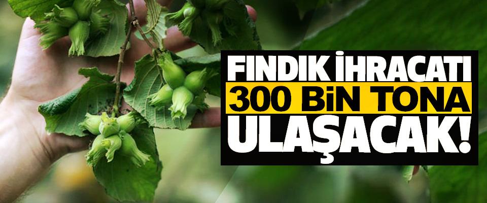 Fındık ihracatı 300 bin tona ulaşacak!
