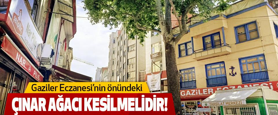 Gaziler Eczanesi'nin önündeki Çınar Ağacı kesilmelidir!