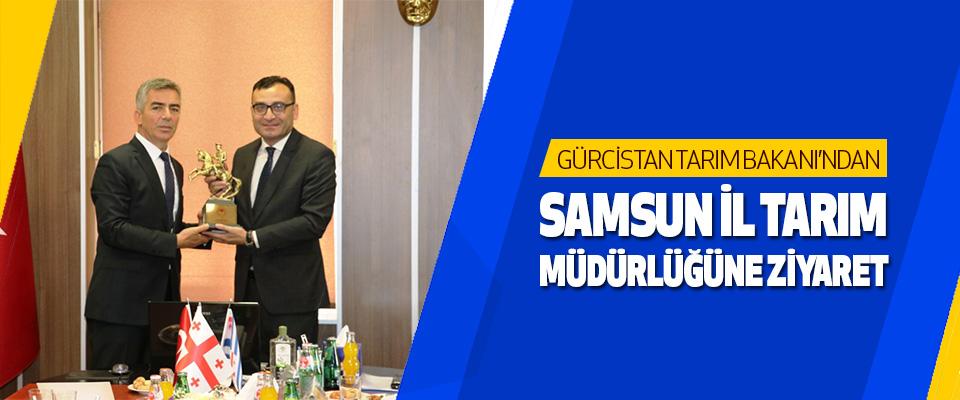 Gürcistan Tarım Bakanı'ndan Samsun İl Tarım Müdürlüğüne Ziyaret