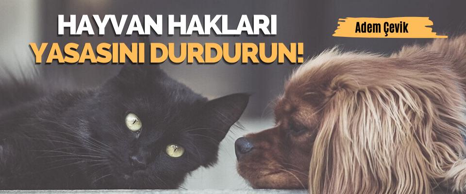 Hayvan Haklari Yasasini Durdurun!