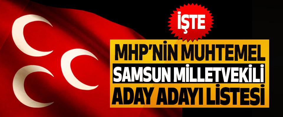 İşte MHP'nin Muhtemel Samsun Milletvekili Aday Adayı Listesi