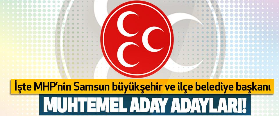 İşte MHP'nin Samsun büyükşehir ve ilçe belediye başkanı Muhtemel aday adayları!