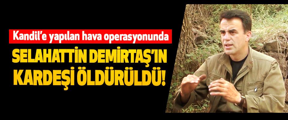 Kandil'e yapılan hava operasyonunda Selahattin Demirtaş'ın kardeşi öldürüldü!