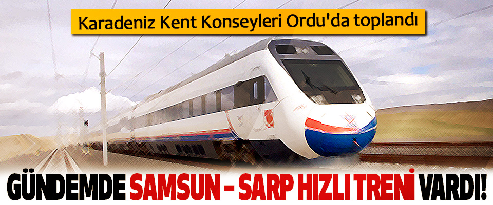 Karadeniz Kent Konseyleri Ordu'da toplandı Gündemde samsun – sarp hızlı treni vardı!