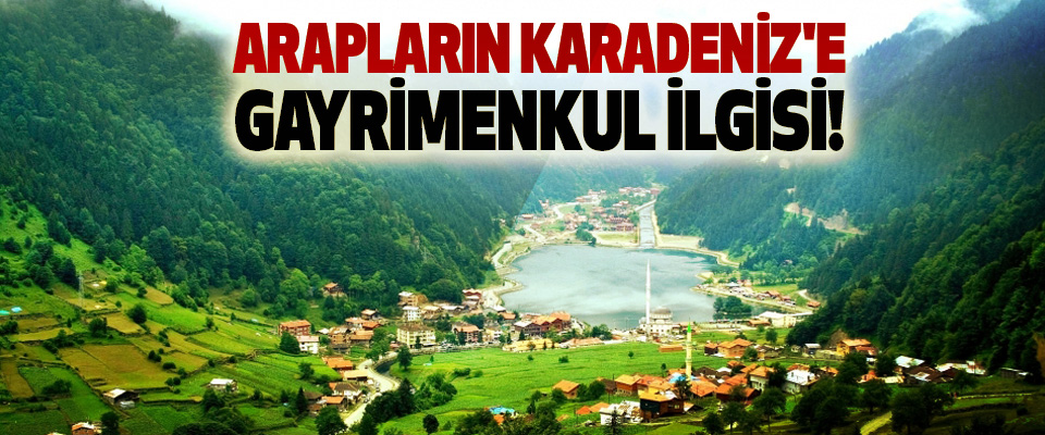 Karadeniz'de Arapların gayrimenkul ilgisi!