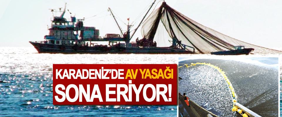 Karadeniz'de av yasağı sona eriyor!