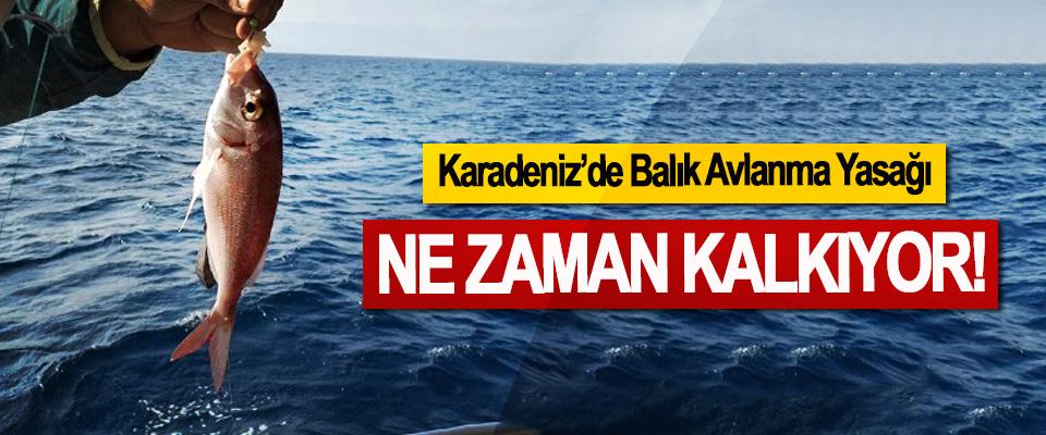 Karadeniz'de Balık Avlanma Yasağı Ne zaman kalkıyor!