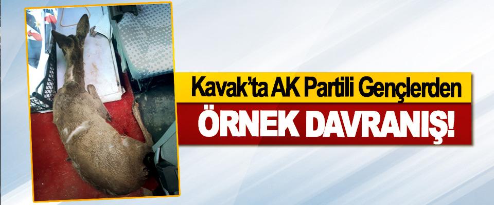Kavak'ta AK Partili Gençlerden Örnek Davranış