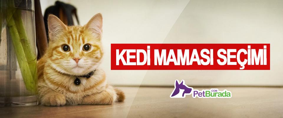 Kedi Maması Seçimi