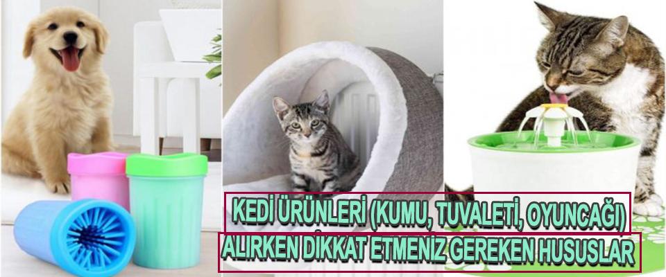 Kedi Ürünleri (Kumu, Tuvaleti, Oyuncağı) Alırken Dikkat Etmeniz Gereken Hususlar
