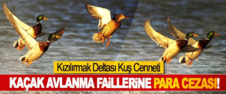 Kızılırmak Deltası Kuş Cenneti Kaçak avlanma faillerine para cezası!