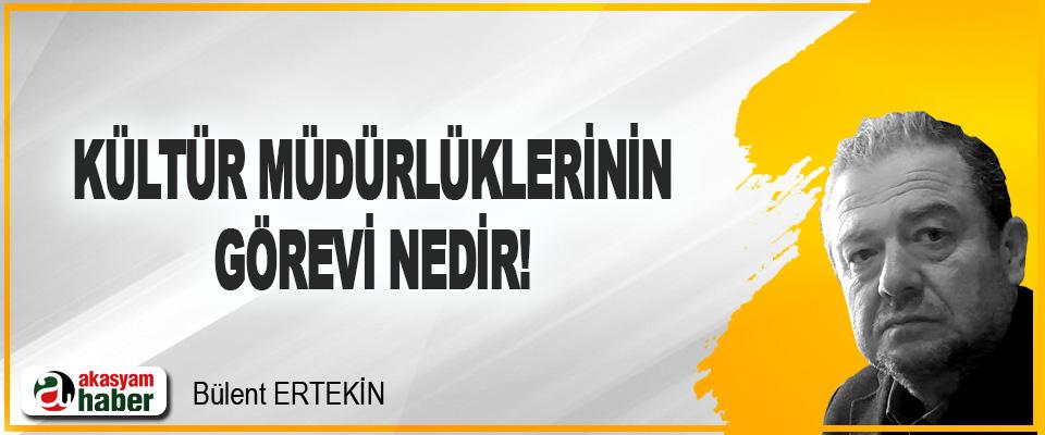 Kültür Müdürlüklerinin Görevi Nedir!