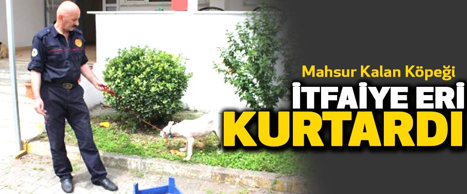 Mahsur Kalan Köpeği 55 yaşındaki İtfaiye Eri Kurtardı..