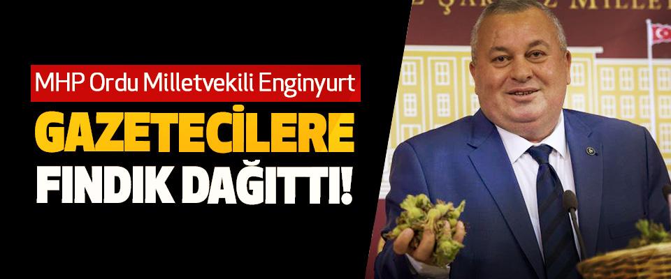 MHP Ordu Milletvekili Enginyurt Gazetecilere Fındık Dağıttı!