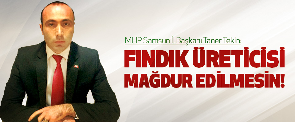 MHP Samsun İl Başkanı Taner Tekin: Fındık üreticisi mağdur edilmesin!