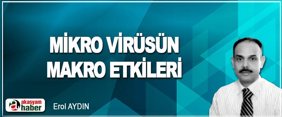 Mikro Virüsün, Makro Etkileri