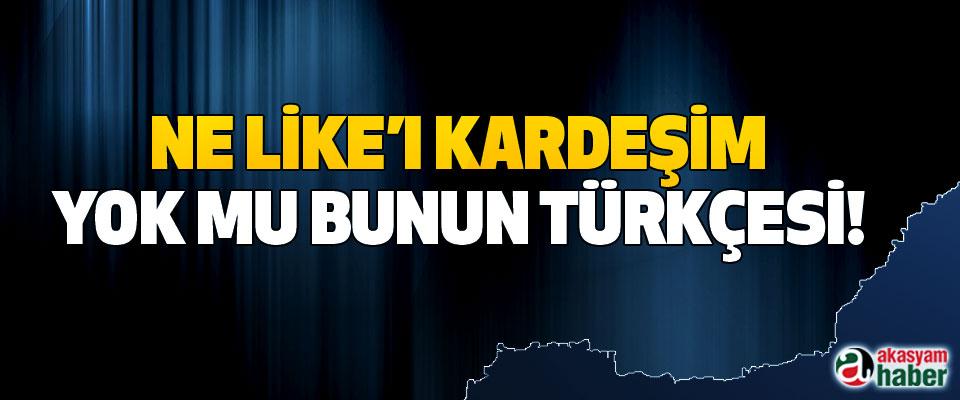 Ne like'ı kardeşim yok mu bunun Türkçesi!