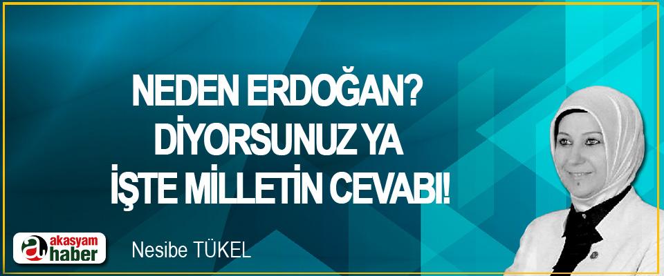 Neden Erdoğan? Diyorsunuz ya işte milletin cevabı!