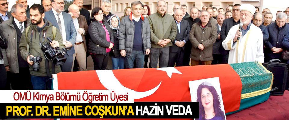 OMÜ Kimya Bölümü Öğretim Üyesi Prof. Dr. Emine Coşkun'a hazin veda